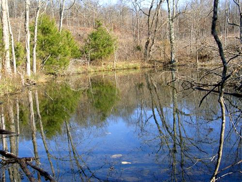 40 Acres, 2 Ponds, Creek, Clearing : Cabool : Texas County : Missouri