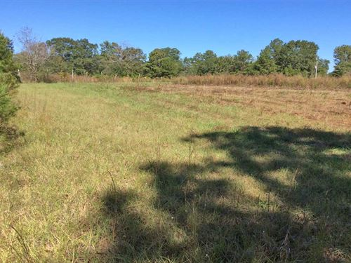 Broad Street Road Tract : Greenville : Butler County : Alabama