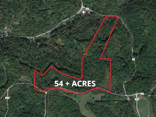 Absolute Noble County Land Auction : Dexter City : Noble County : Ohio