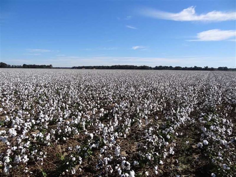 290 acre farm gregory arkansas farm for sale gregory