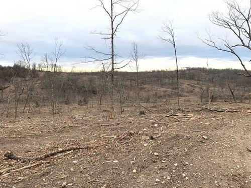 254 Acres in Macks Creek Mo : Macks Creek : Camden County : Missouri