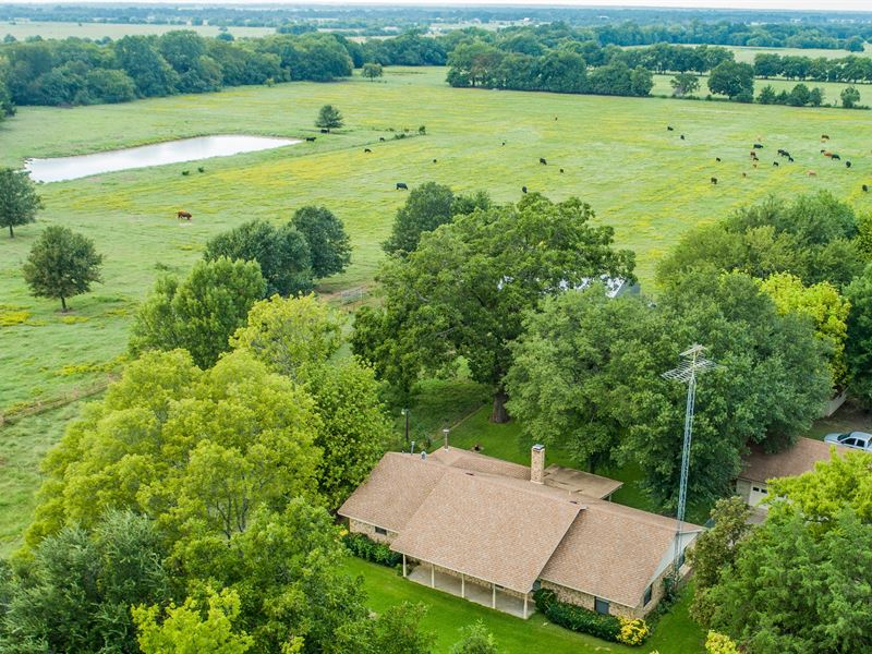 Cattle Ranch On Large Acreage : Ravenna : Fannin County : Texas