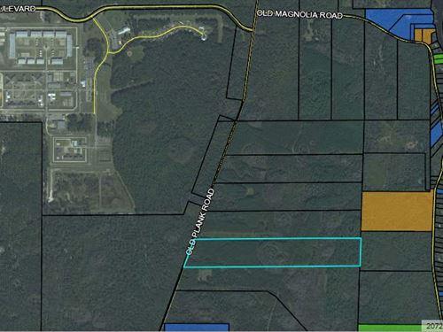 Old Plank Lot 4 : Crawford : Wakulla County : Florida