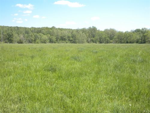 Great Little Farm : Willow Springs : Howell County : Missouri