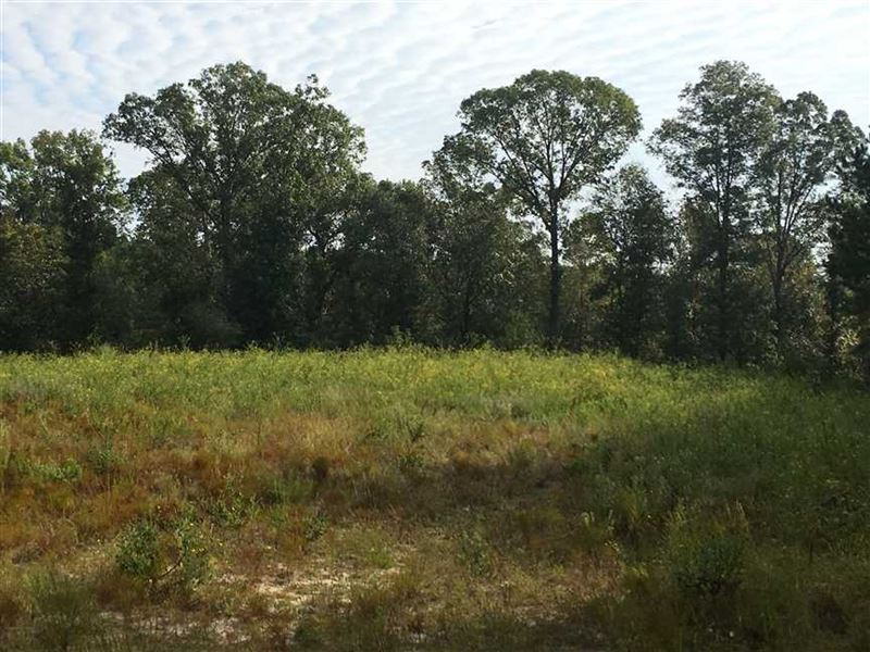 Gumm Creek Tract 611.95 Acres : Milledgeville : Baldwin County : Georgia