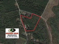 14.2 Acres Of Prime Hunting Land : Manning : Clarendon County : South Carolina