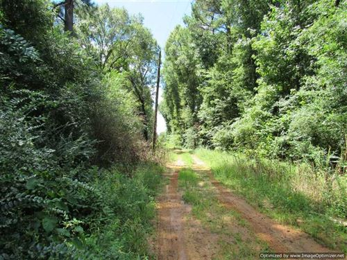 765 Acres Recreational Property on : Canton : Madison County : Mississippi