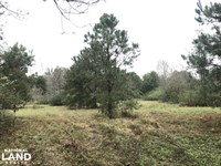 Falling Leaves Waterfront Hunting : Roseboro : Sampson County : North Carolina