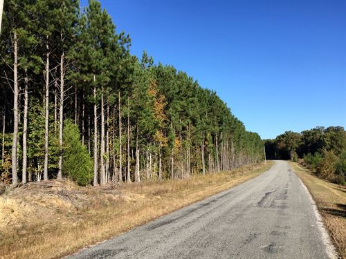 Cash School Road Tract - Tract 1548 : Milledgeville : Chester County : Tennessee