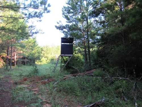 4-007 Cr-1 West Hunting And Timber : Jones : Autauga County : Alabama