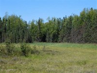 80 Acres, Spacious True Alaskan : Wasilla : Matanuska-Susitna Borough : Alaska