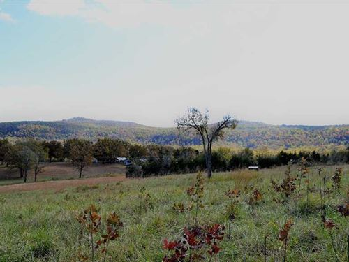 13 Acres With Pond & Fantastic : Marshall : Searcy County : Arkansas