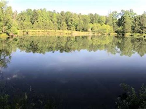 Great Small Tract With Lake Jasper : Hillsboro : Jasper County : Georgia