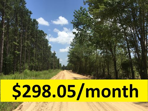 Owner Financed With 2 Home Sites : Kite : Emanuel County : Georgia