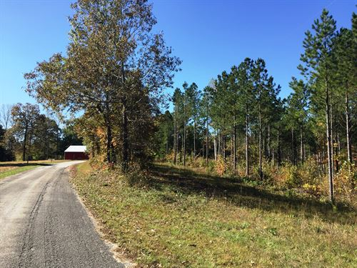 Tract 1573- Sealed Bid Land Sale : Bath Springs : Decatur County : Tennessee