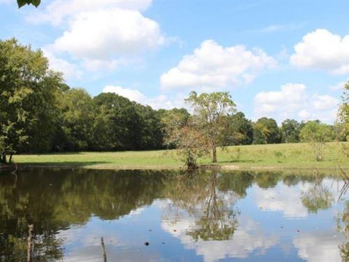 Czech Ranch : Plantersville : Grimes County : Texas