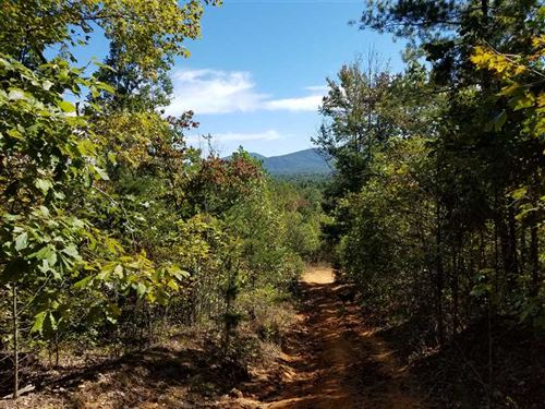+70 Acres in Wilkes County : Boomer : Wilkes County : North Carolina