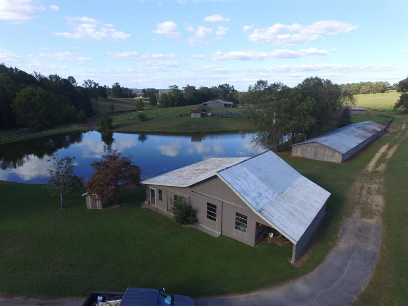 Peaceful 83 Acres Home & Ponds Farm for Sale eonta Blount Co