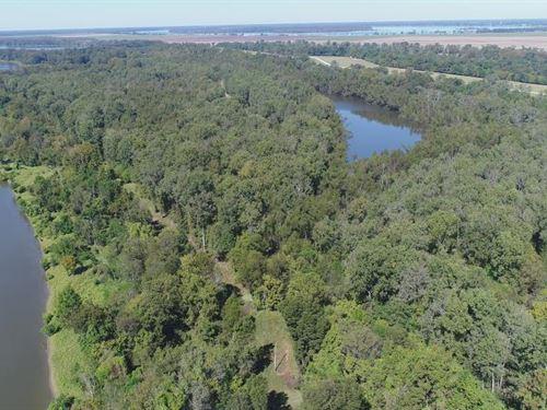 Tara Wildlife, Halpino : Vicksburg : Warren County : Mississippi