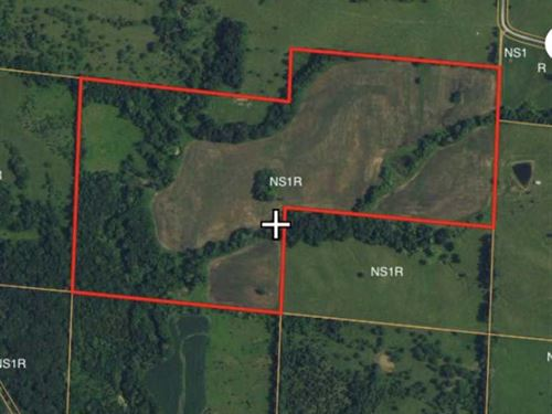 One Great 68 Acre Tillable-Hunting : New Boston : Linn County : Missouri