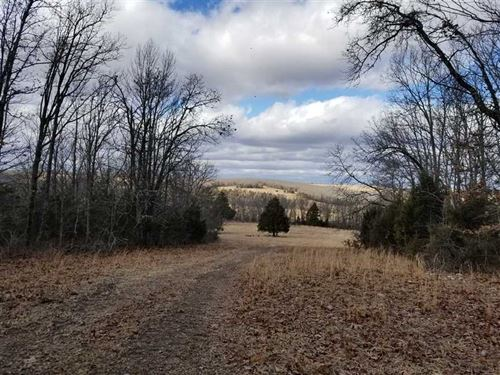 230 Acres - Creek Frontage, Excell : Plato : Texas County : Missouri