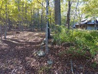 Williams Woods 557 : Saint Paul : Madison County : Arkansas