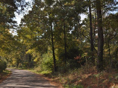340 Ac Cr 779 : Douglass : Nacogdoches County : Texas