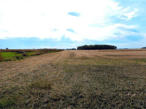 Land Auction In White Co., Indiana : Monticello : White County : Indiana