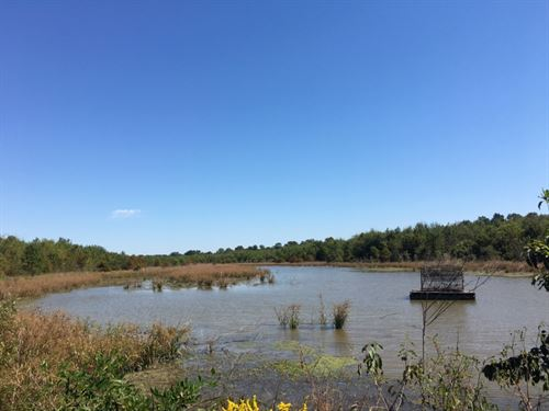 Deer & Duck Hunting Paradise : Waterproof : Tensas Parish : Louisiana
