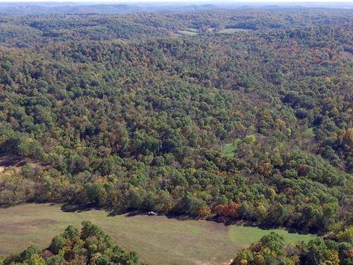 265 Acres Pike Rd 9117 Pike County : Louisiana : Pike County : Missouri