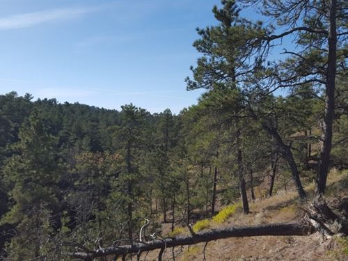 Pine Ridge Elk Ranch : Crawford : Sioux County : Nebraska