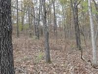 40 Acres Recreation Land Benton Co : Cole Camp : Benton County : Missouri