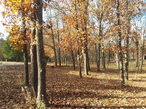 Hunters Look 80 Acres St. Clair : Osceola : Saint Clair County : Missouri