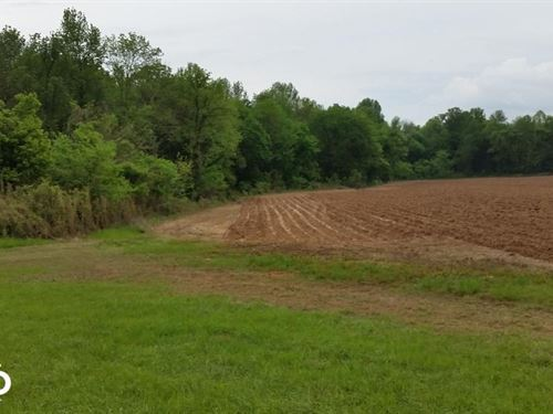 235 Acres On Gleaton Road, Farm And : Pope : Panola County : Mississippi