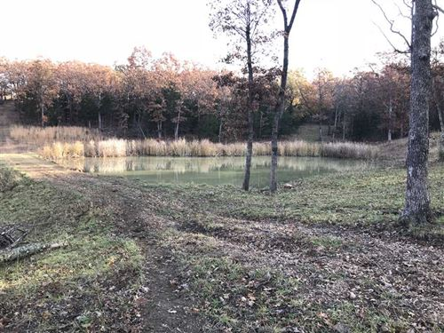 Multi Use 126 Acre Farm in Miller : Iberia : Miller County : Missouri