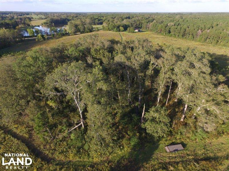 Hayneville Ridge Road Tract D And : Mathews : Montgomery County : Alabama