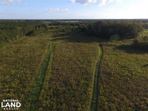 Hayneville Ridge Road Tract : Mathews : Montgomery County : Alabama