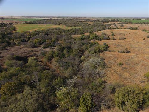 160 Acres Of Hunting And Farmland : Covington : Oklahoma County : Oklahoma