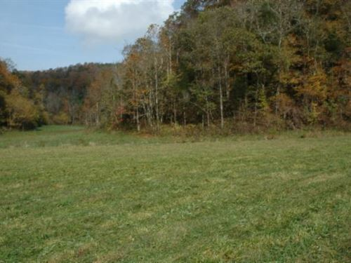 52.75 Ac Farm W/2005 Ranch Home : Celina : Clay County : Tennessee