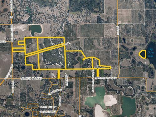 Masterpiece Road Ranch : Lake Wales : Polk County : Florida