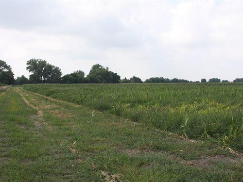 Eastern Nebraska Platte River Ranch : Clarks : Merrick County : Nebraska