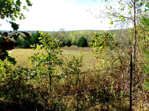 19 Acres, Seasonal Creek, Old Home : Manes : Wright County : Missouri