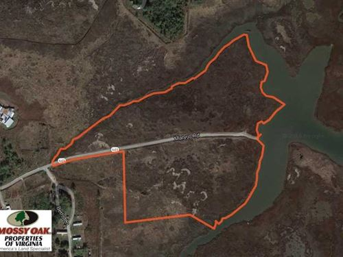 40.75 Acres of Waterfront Hunting : Hayes : Gloucester County : Virginia