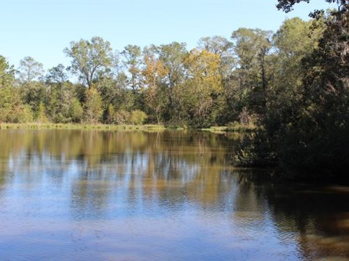 Hunting/ Fishing Getaway Near I-85 : Hardaway : Macon County : Alabama