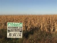 Large Productive Farm : May City : Osceola County : Iowa