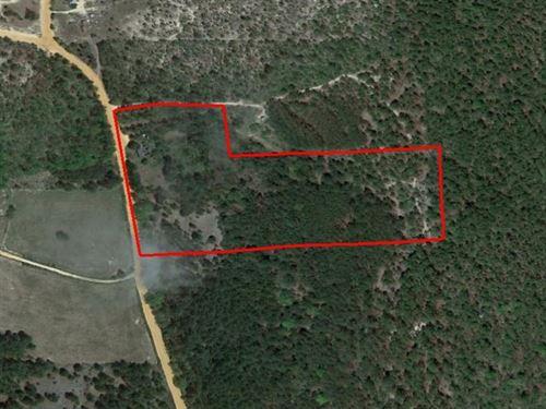 Old Farm Site : Mauk : Taylor County : Georgia