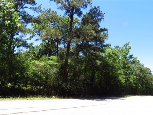 93.00 Acres in Conroe, Texas : Conroe : Montgomery County : Texas