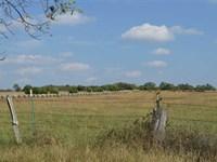 205 Acres Lebanon Missouri : Lebanon : Laclede County : Missouri