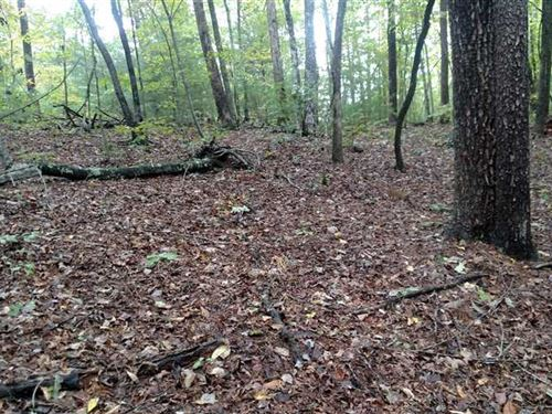 117 Acres Mountain Land With Strea : Marion : McDowell County : North Carolina