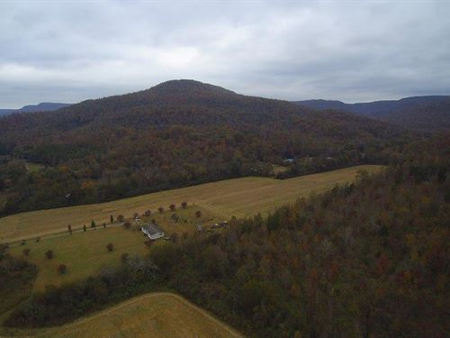 30.08+/-Acres Hunting Land For $45K : South Pittsburg : Marion County : Tennessee